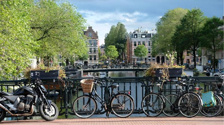 International movers to the Netherlands